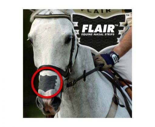 Flair Equine Nasal Strip Applied - Black on White Horse